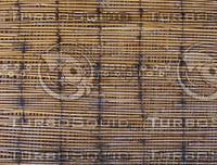 bamboo2.jpg