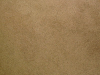 carpet_2717 tm.jpg