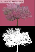Tree FB001