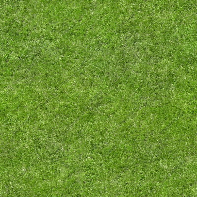 texture other grass texture map