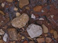 Rock Texture - Gravel 5