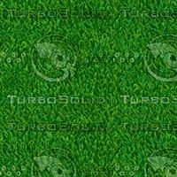 ground107-grass.png