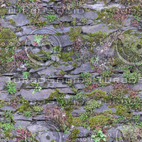 Mossy Stone Wall - 2048 x 2048