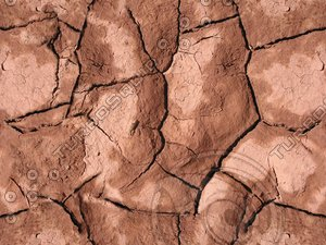 Tileable Mud Crack Texture w/ Bump