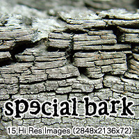 Special Bark Pack