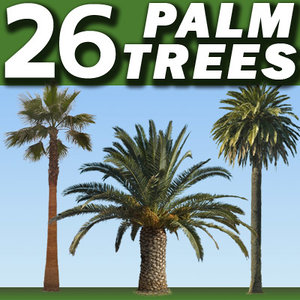 26 Palm Trees collection --------------------- High Resolution
