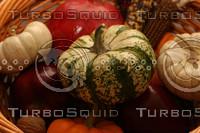 Gourds_5142.jpg