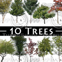 Hi Res Trees - Pack #1