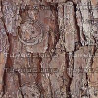 brown_bark.jpg