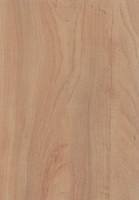 wood026.JPG