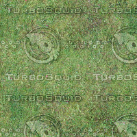 Low resolution Grass ground 01