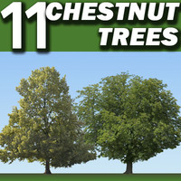 11 Chestnut Trees Collection  ----------------- High Resolution.psd