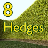 8 Hedges Collection/Architect Visualisation  High Resolution