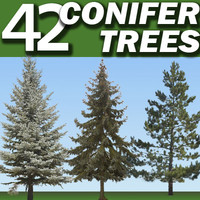 42 Conifer Trees Collection ------------------ High Resolution