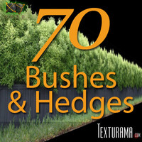 Bushes_Texturama.zip