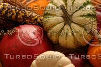 Gourds_5139.jpg