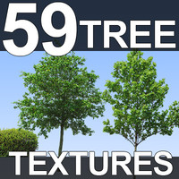 59-Tree-Textures-Full.zip