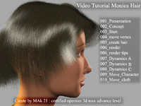 Video Workshop create hair in 3dmax 8