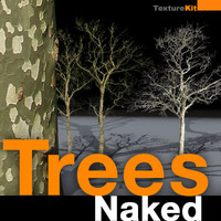 Trees Naked Collection