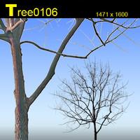 Tree0106.zip