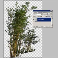 Bamboo003.zip