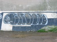 graffiti_zor_5.JPG