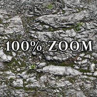 Medium resolution Rocky ground with moss and grass + Bump Map