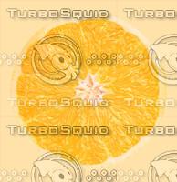 orange_inner.jpg