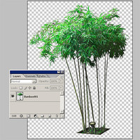 Bamboo001.zip