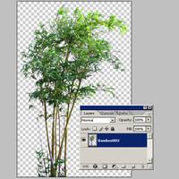 Bamboo002.zip