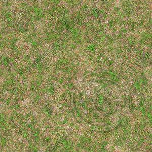 High resolution Grass ground 03