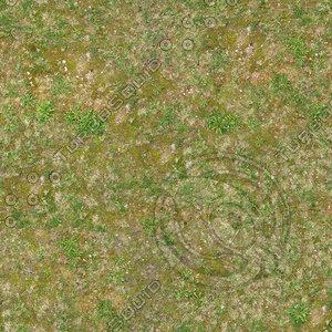 High resolution Grass ground 02