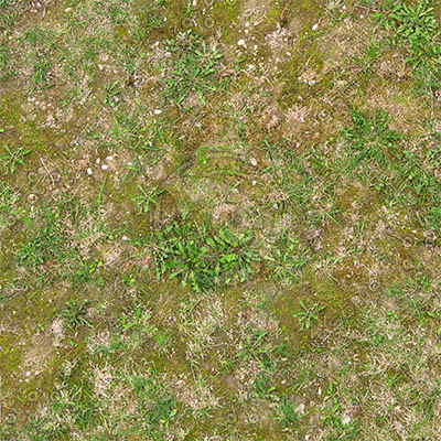Texture Other Ground Grass Seamless