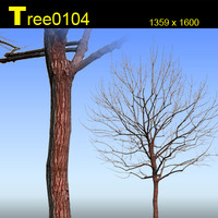 Tree0104.zip