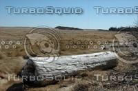 TurboSquid040806.jpg