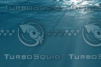 Underwater with sun rays 110.jpg