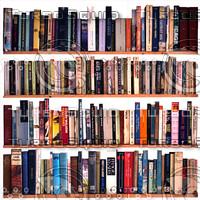 bookcase 2.jpg