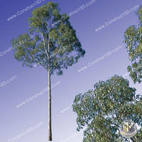 c3d_outback_tree_011.png