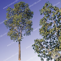 c3d_outback_tree_020.png