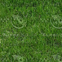 grass_002_2048x1365_tileable.jpg