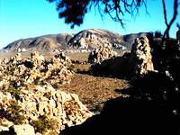 Mojave Photos 2