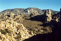 Mojave Photos 5