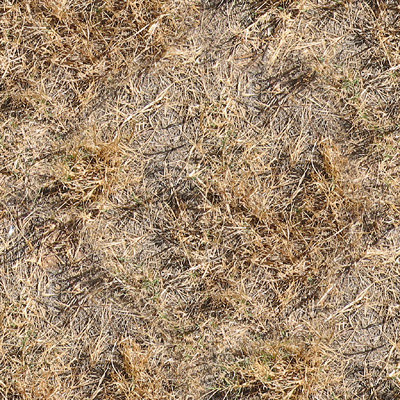 Texture Other Dirt Grass Road