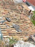 tiled_roof_1.JPG
