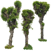 Decorative trees 1
