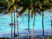 BLUE_PALM_LAGOON.JPG