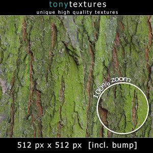 Bark Texture 007 - free Version