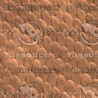 Brown Scales.jpg