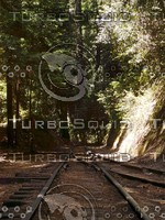 Roaring Camp Railroads - The Upper Junction