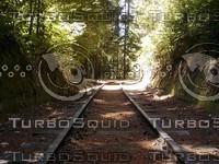 Roaring Camp Railroads - The Track